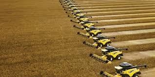PR: safra de verão chega ao final com quase 25 milhões de toneladas, diz Deral