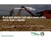 Brasil deve plantar mais soja e menos milho, arroz, feijão e algodão