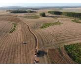 Com alta nos preços dos grãos, procura por terra e arrendamento aumenta no RS.