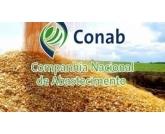 Conab prevê novo recorde para safra brasileira de grãos