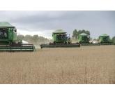 Goiás deverá colher 21,6 milhões de toneladas de grãos