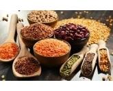 Nova estimativa da safra de grãos aponta aumento de 1,9%