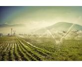 Oeste da Bahia vai ganhar o 1° polo de irrigação do NE