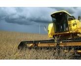 Paraná vai colher 22,7 milhões de toneladas na safra de grãos