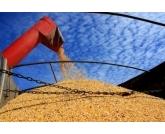 Produção de grãos cresce 3,4% e chega a 235,3 milhões